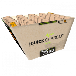 L006 Quick Charger